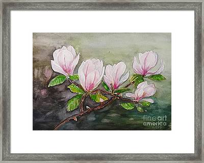Magnolia Blossom - Painting Framed Print by Veronica Rickard