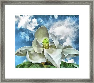 Magnolia Dreams Framed Print by Wendy J St Christopher