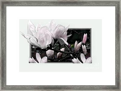 Magnolia Fantasy I Framed Print by Madeline Ellis
