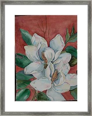 Magnolia Five Framed Print by Diane Ziemski