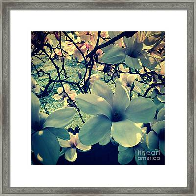 Magnolia Flowers Design Framed Print by Tanja Riedel