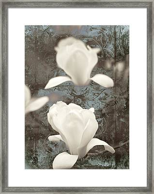 Magnolia Framed Print by Frank Tschakert