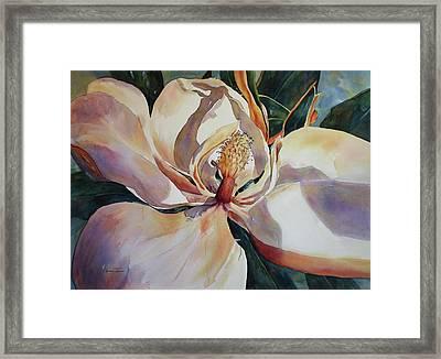 Magnolia, Golden Glow Framed Print