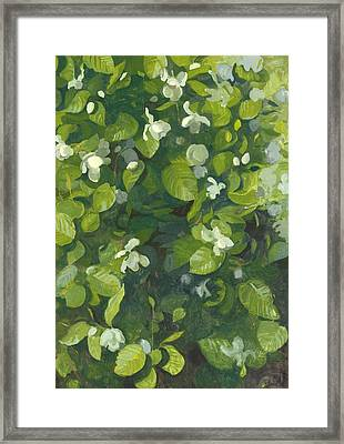 Magnolia In Flower Framed Print by Leigh Glover