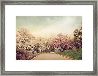 Magnolia Lane Framed Print by Jessica Jenney
