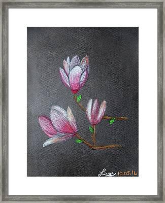 Magnolia Framed Print by Linnea Moshkovitz