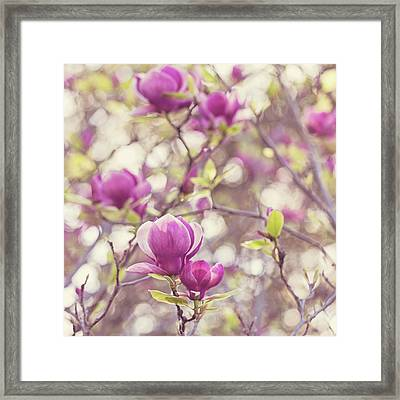 Framed Print featuring the photograph Magnolia by Melanie Alexandra Price