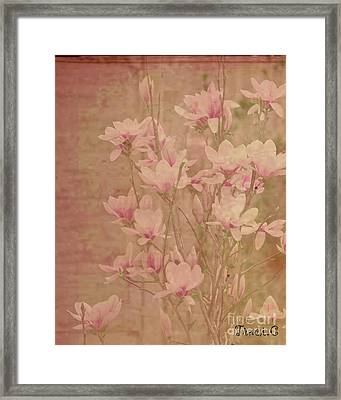 Framed Print featuring the photograph Magnolia Nostalgia by Traci Cottingham