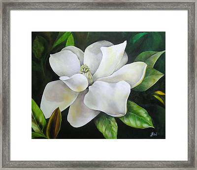 Magnolia Oil Painting Framed Print