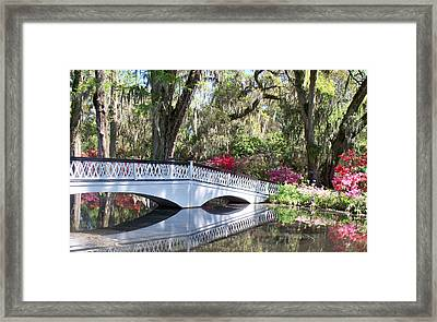 Magnolia Plantation Series 1 Framed Print by Melanie Snipes