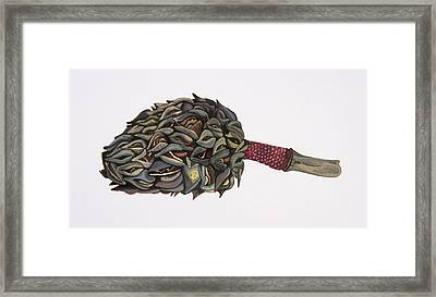 Magnolia Seedpod Framed Print