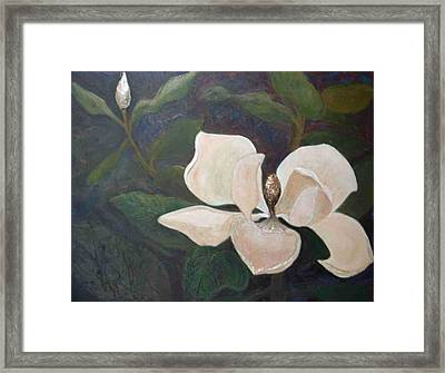 Magnolia Spring Framed Print by Win Peterman