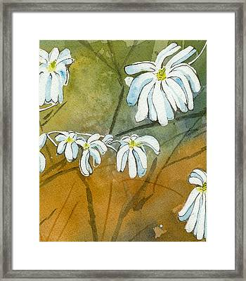 Magnolias 1 Of 3 Framed Print