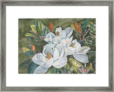 Magnolias Five Framed Print