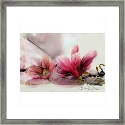 Magnolien .... Framed Print by Jacqueline Schreiber