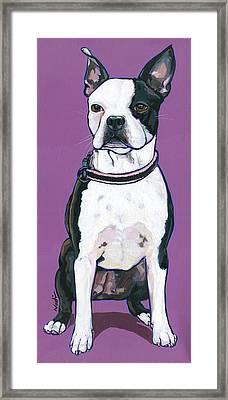 Magpie Framed Print by Nadi Spencer