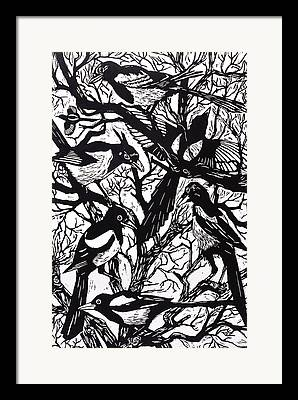 Magpies Framed Prints