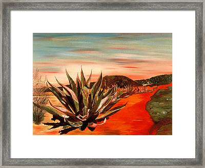 Magueys At Sunset Framed Print by Oudi Arroni