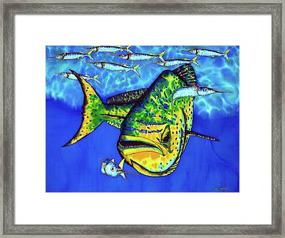 Mahi Mahi And Ballyhoo Framed Print