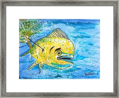 Mahi Mahi -dolphin Fish - Dorado Framed Print