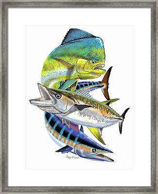 Mahi Wahoo Kingfish Framed Print by Carey Chen