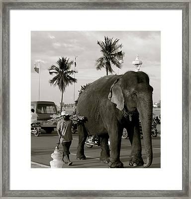 Mahout And Elephant Framed Print by Louise Fahy