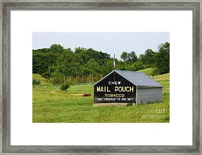 Mail Pouch Tobacco Barn In Maryland Framed Print