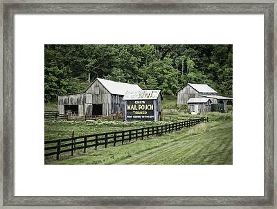 Mail Pouch Tobacco Barn Framed Print
