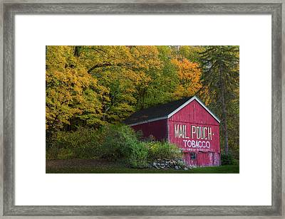Mail Pouch Tobacco Framed Print by Bill Wakeley
