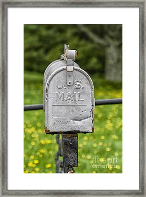 Mailbox Framed Print by Patricia Hofmeester