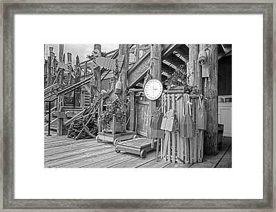 Maine Attraction Bw Framed Print