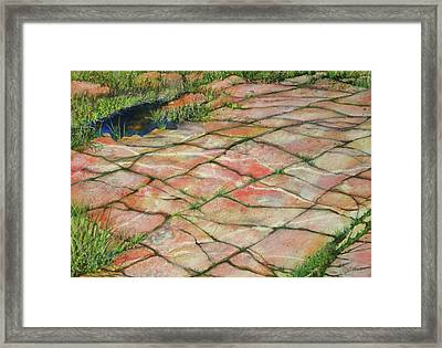 Maine Coast Lines Framed Print by Susan Herbst