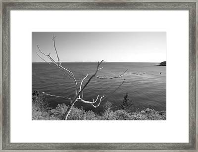Framed Print featuring the photograph Maine Coastline by Corinne Rhode