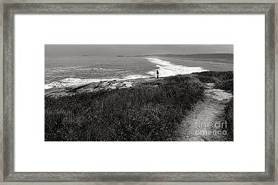 Maine Contemplation Framed Print by Olivier Le Queinec