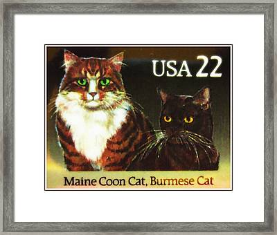 Maine Coon Cat And Burmese Cat Framed Print by Lanjee Chee