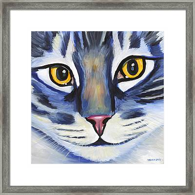 Maine Coon Framed Print by Melissa Smith