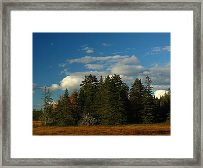 Maine Landscape Photography Framed Print by Juergen Roth