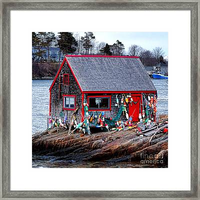 Maine Lobster Shack Framed Print by Olivier Le Queinec