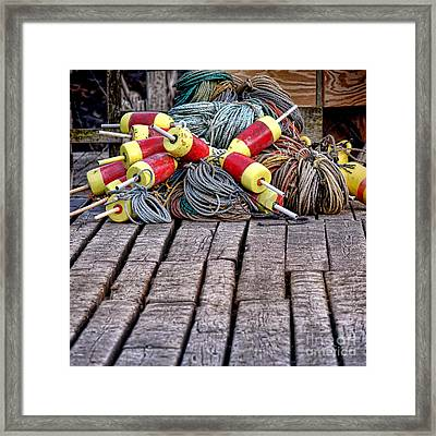 Maine Lobsterman Gear Framed Print by Olivier Le Queinec