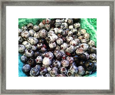 Framed Print featuring the photograph Maine Pearls by Olivier Calas