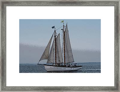 Maine Schooner Framed Print