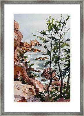 Maine Shoreline Framed Print by Art Scholz