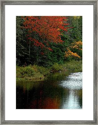 Maine Stream In The Fall Framed Print