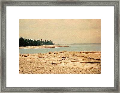 Maine Summer Framed Print by Desiree Paquette