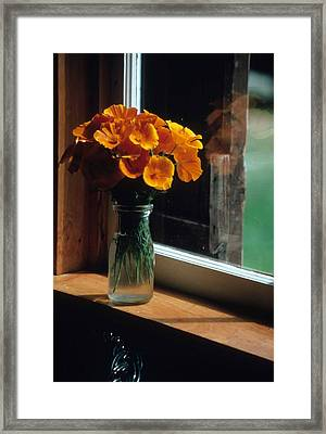 Maine Windowsill Framed Print by Laurie Paci