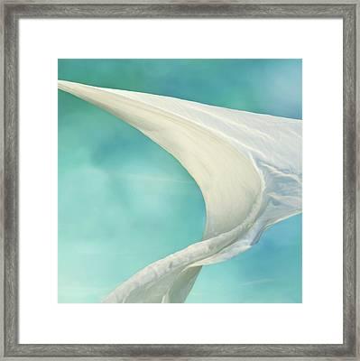 Mainsail 2 Framed Print by Laura Fasulo