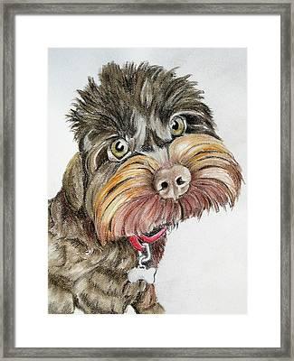 Maisie Moo Framed Print