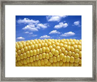 Maize Framed Print by Victor De Schwanberg