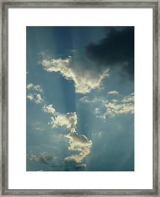 Majestic Blue Framed Print by Stephen Davis