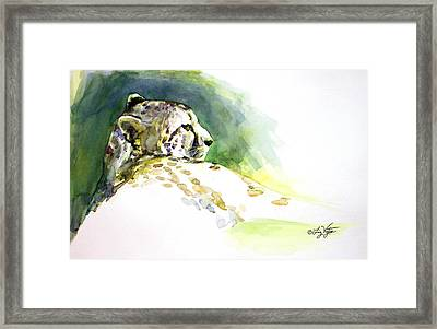 Majestic Cheetah Framed Print